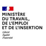 """""""100% inclusion"""" Plan d'investissement des compétences – Ministère du travail, de l'emploi et l'insertion"""
